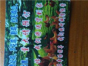 野生散養谷柴雞、黑雞、貴妃雞、蘆花雞等銷售