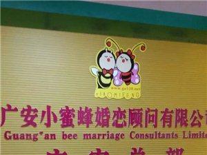 小蜜蜂婚恋招商加盟,开一家成一家。