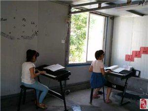小小快樂電子琴培訓班2015年暑假報名開始啦