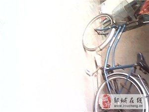 6成新普通自行车,可租、售。