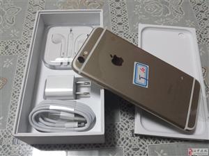 全新金色16g美版iphone6 4200元!