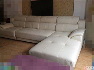 靠谱家具新到超纤皮沙发