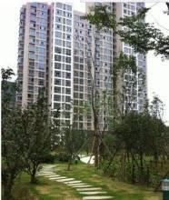 泗洪河�I1�