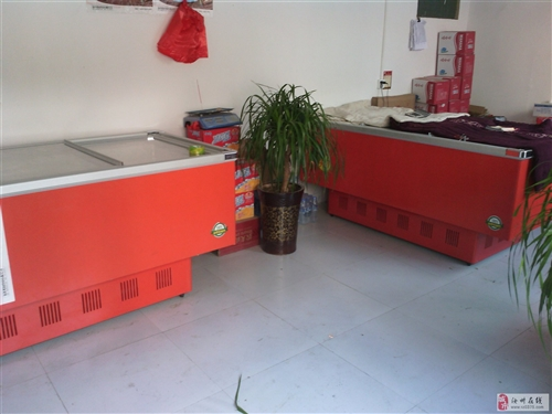 澳门威尼斯人在线娱乐9成新1000升卧式冰柜
