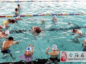 合阳县海豹游泳培训班4天300元包教包会,学会为止