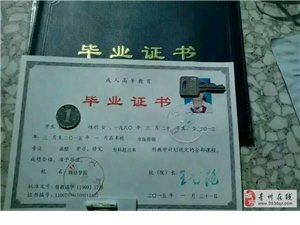 關注成考致力于東辰教育