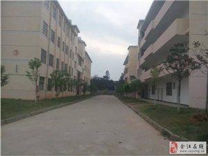 余江金林学校