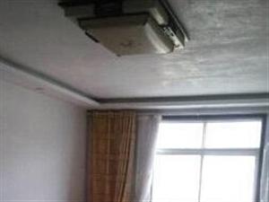 项城市标边上小区 3室2厅135平米 精装修 年付