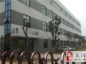 武汉东湖高新区关南工业园企业产权18亩工业园带厂房