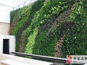 廣州生態屏風