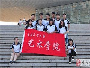 """艺术学院""""晋承传统文化,面向精彩未来""""暑期社会实践"""