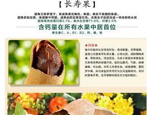 云南特產甜角批發零售