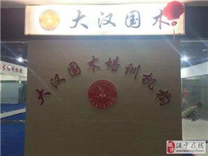 中华武术的传承