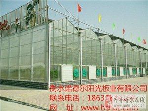 分析阳光板温室的优势条件