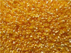 玉米制糁机 玉米碴子机