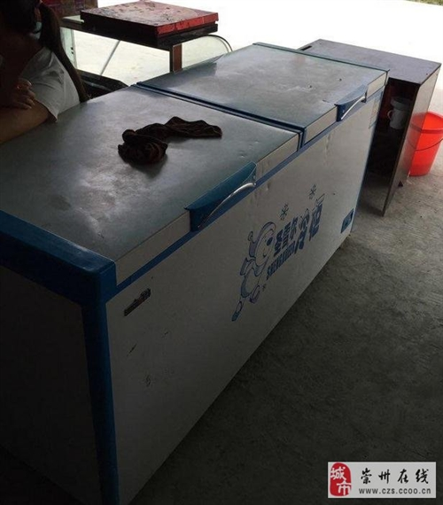 大容量单温冰柜