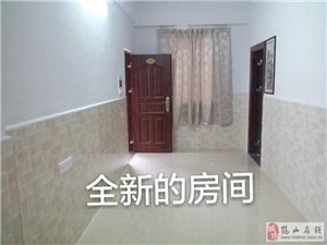 沙坪石岭新村一房一厅浪漫公寓出租