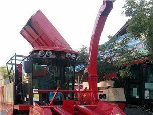 新型玉米收获机承接玉米秸秆回收,棒子去皮,还带回田