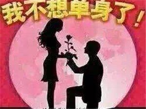 创世纪情缘婚恋