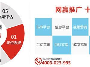 重慶網推公司