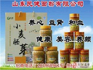 民健小麦胚芽天然优质安全营养美容保健