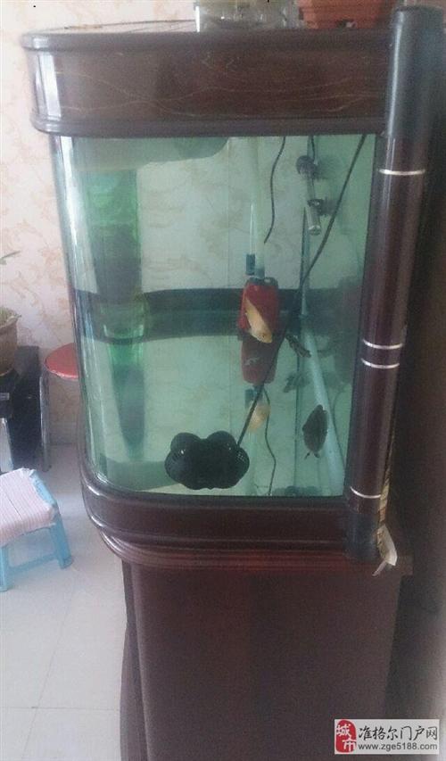 出售精品鱼缸