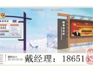 南京哪里有专业做宣传的啊