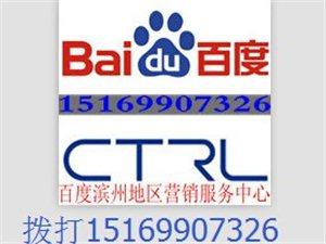 濱州百度公司為您服務,提供百度推廣,網站建設服務