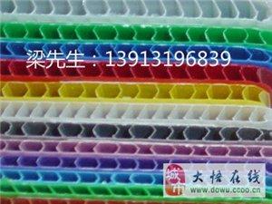 上海中空板 瓦楞板 PP中空板箱