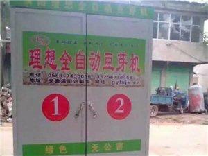理想全自动豆芽机绿色无公害