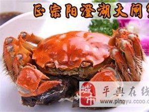 蘇州陽澄湖大閘蟹−−隆重上市