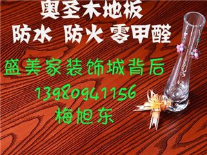 蒲津奥圣木塑地板安岳专卖店