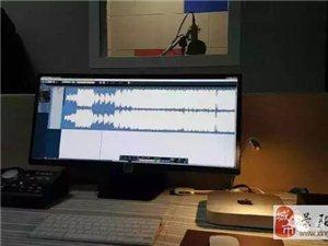 滎陽廣告錄制、金孔雀、音樂錄制、錄音、