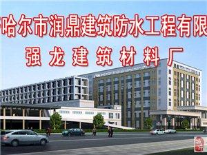 齊齊哈爾市潤鼎建筑防水工程有限公司