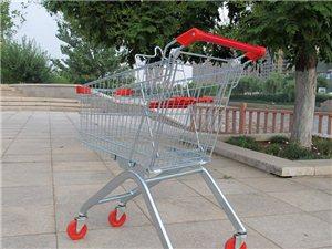 天津購物車超市購物車超市小推車天津正豪貨架廠