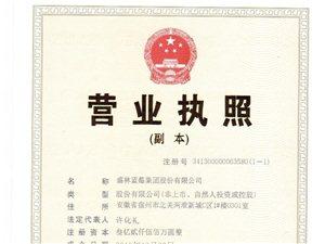 盛林藍莓集團股份有限公司