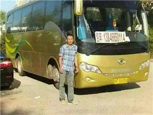 金龍客車37座長短途包車
