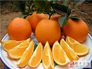 出售赣南信丰脐橙
