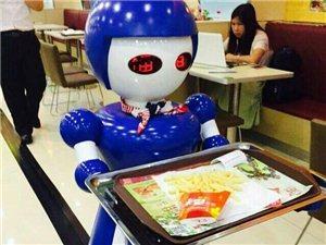 穿山甲專業研發餐飲機器人國內首家磁導航觸摸屏送餐