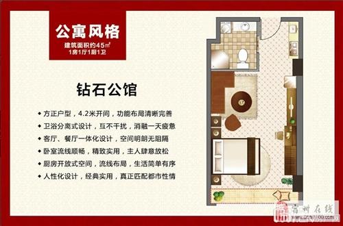 钻石公馆-45m2-1室1厅