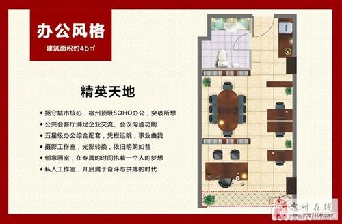 精英天地-45m2-1室1厅