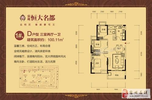 1#东D-100.11m2-3室2厅