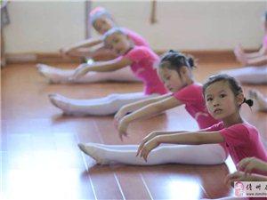 儋州静雅舞蹈团中国舞考级