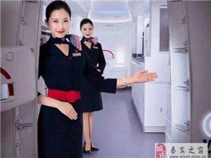 空中乘务专业速成班