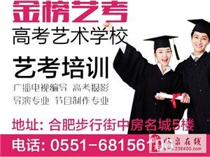 臨泉高三學生300分上本科450分上211重點大學