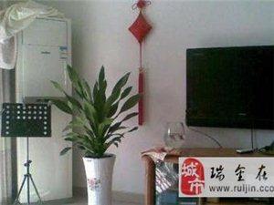 澳门太阳城网站锦江名城峰景豪装3居,新房未入住(个人)