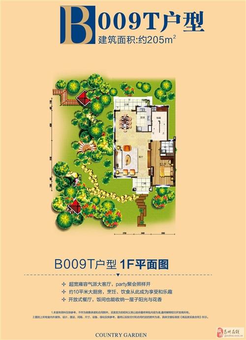 别墅B0998户型