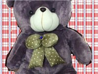 全新泰迪熊 抱抱熊