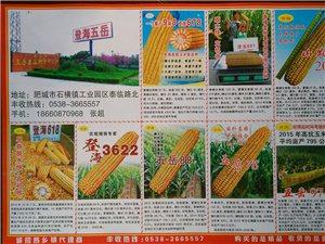 诚招乡镇种子、肥料经销商