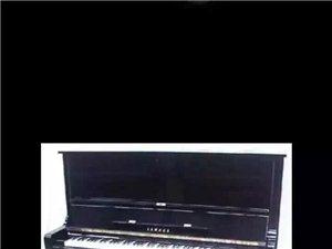 假期推行钢琴小组课